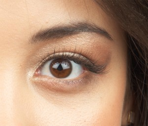 Brows and lashes - PHOTO